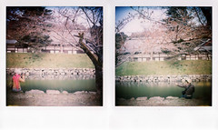 The fantastic world !! (Twiggy Tu) Tags: trip film brad japan polaroid kyoto 600 2008 twiggy  sx70sonar jewelryofjordan