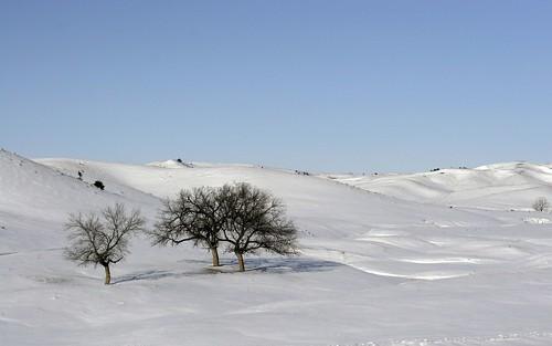 00605_snowscape_2560x1600.jpg