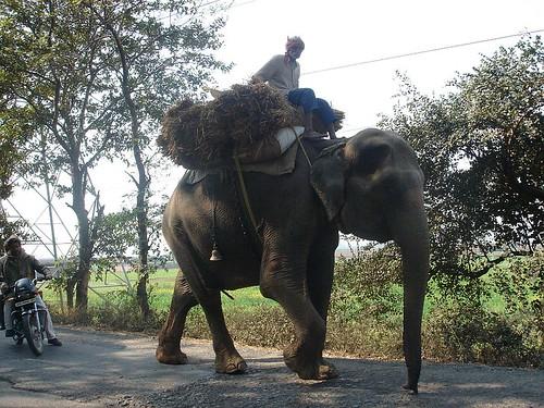 Patna-Gaya Highway