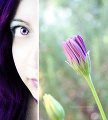 deep purple. (*northern star) Tags: portrait plants selfportrait flower eye me nature girl self canon mouth garden hair is purple bokeh natura io explore half autoritratto 1855 fiore piante viola ritratto occhio bocca giardino ragazza capelli sfocato mezzo halfme northernstar met explored donotsteal eos450d allrightsreserved hbw halfself northernstarandthewhiterabbit northernstar tititu digitalrebelxsi usewithoutpermissionisillegal northernstarphotography ifyouwannatakeitforpersonalusesnotcommercialusesjustask