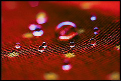 drops on the table ... (Hausstaubmilbe) Tags: table drops wasser canoneos20d tropfen tischtuch