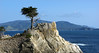 Lone Cypress (anadelmann) Tags: california ca old usa canon landscape pacific alt pebblebeach lonecypress 17miledrive cypress pacificgrove landschaft pictureperfect canonpowershot pazifik naturesfinest zypresse v1000 g9 abigfave f2549 platinumphoto theunforgettablepictures canonpowershotg9 absolutelystunningscapes anadelmann nxpl