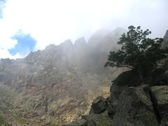 Au col de l'arbre, vue vers le Capu Rossu