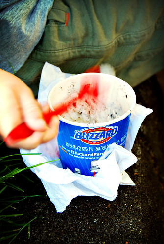 the DQ