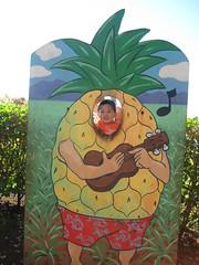 Even as a pineapple, I love the ukulele