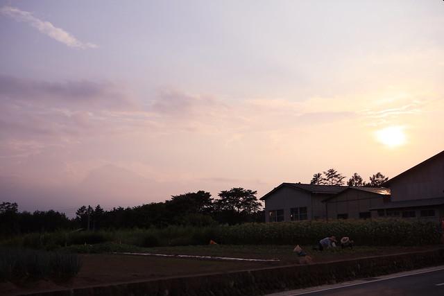 夕暮れ山紫