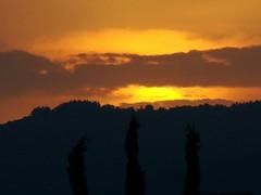 10/09/2008 19:20 (Marsala Florio) Tags: sunset sky italy orange yellow italia tramonto amarillo giallo cielo brianza lombardia arancio gmt cmwdyellow