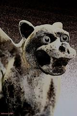 Gargoyle Under My Bed (cinsy) Tags: eve art halloween night dark scary fear northcarolina samhain gargoyle horror terror shelby mystical concept myth fright hallowseve clevelandcounty allhallowseve devilsnight allsaintseve cinsy mischiefnight allhallowsday