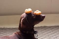 Donut Test
