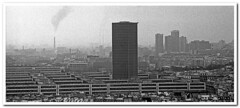 Parigi (Enrico Miglino) Tags: europa louvre monumento notredame poesia bianco antico nero paesaggio citt parigi metropoli grottesco miglino