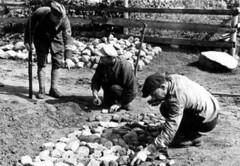 Tewerkgestelde Joden in Polen