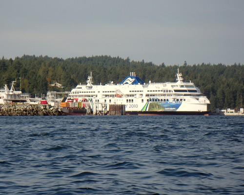 2008-10-11 Portland Island 024