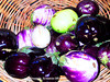 Fresh Eggplants (phil_sidenstricker) Tags: nature produce flickrmeet justonelook donotcopy valleyofthesunphoenixmetro upcoming:event=981998 southmountainfarmphoenixusa