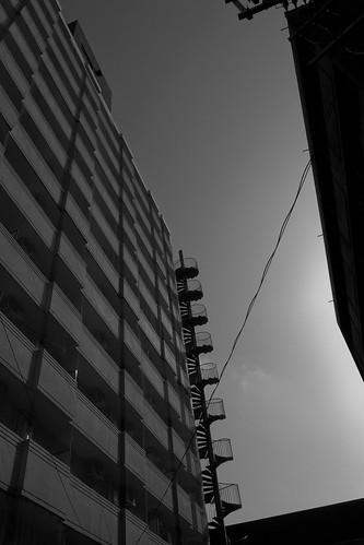 niigata monochrome 10