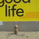 good life thumbnail
