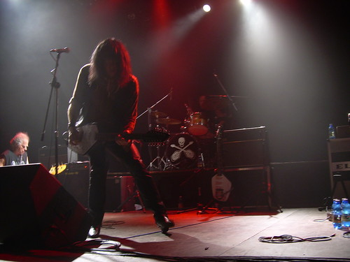 the fuzztones gonn primitive-24 ottobre 2008 live 10 - fanzine