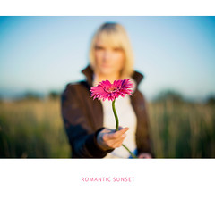 Romantic Sunset #6 (Geshpanets) Tags: portrait flower girl beauty field 50mm bokeh outdoor gerbera 5d 5014 canonef50mmf14usm russiangirl