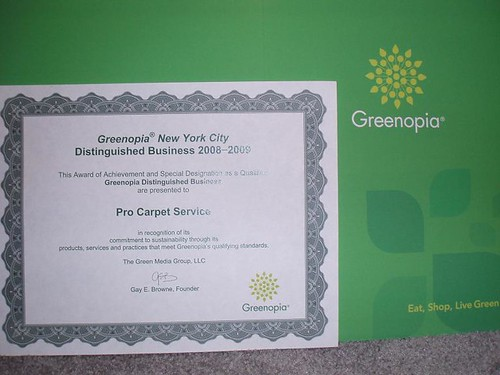 procarpetservice green cleaning ny