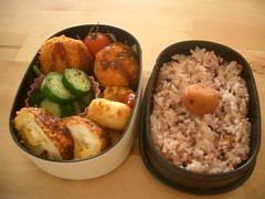 (skamegu) Tags: rice cucumber egg bento japanesefood tatertots