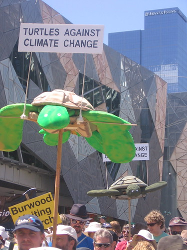 Turtle power at Walk Against Warming – Melbourne