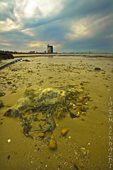 KPC -Kuwait Petroleum Corporation (alkhaledi) Tags: sea sky water colors canon landscape photo kuwait q8  alkhaledi