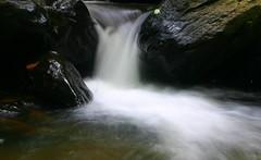 another stream (CosmicDust) Tags: karnataka coorg madikeri civetcreek