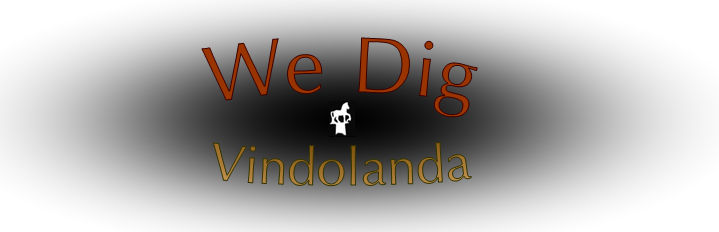 We Dig Vindolanda