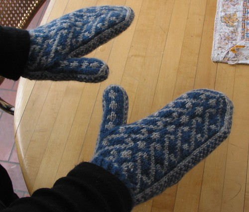 Magnificent Mittens blue/gray crop
