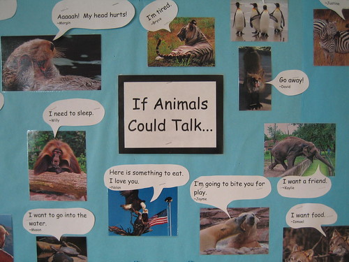 If Animals Could Talk Essay