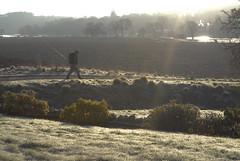 Frosty morning (PanuK) Tags: flyfishing spey