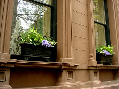 Window Boxes in Brooklyn Heights