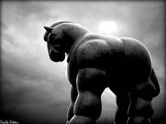 El Caballo de Botero. (Orcoo) Tags: sculpture horse art statue mexico caballo arte monumento dramatic escultura nuevoleon monterrey obra botero fernandobotero equino macroplaza cuaco orcoo dramatico caballodebotero boteroart boteroescultor