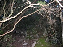 Le sentier du col de Ferula