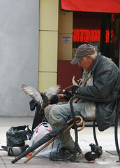 Homeless man feeding pigeons (Please read below) (Eldad Hagar (Please support Hope For Paws)) Tags: santa street food man birds losangeles los feeding angeles santamonica burger fat pigeons homeless fastfood poor loveit monica fatburger hamburger hagar 3rd califronia homelessman eldad aplusphoto eldadhagar alwayscomment5 100commentgroup thewonderfulworldofbirds loveitalwayscommenton5 losangeleshomelessman homelessmanfeedingpigeons