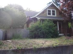 Front yard, sans tree