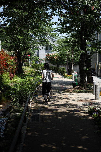 木陰のジョギング