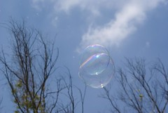 Quisiera ser burbuja // i want be bubble (Jos Manuel Reyes F.) Tags: wood sky tree forest mexico arbol soap colorful arboles surrealism creative bubbles bosque flyers soapbubbles burbujas chapultepec surrealismo voladores bosquedechapultepec papantla voladoresdepapantla papantlaflyers subreal flyingbubbles burbujasdejabon flyinmen woodsofchapultepec