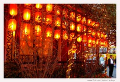 One Best Dinner (Araleya) Tags: china leica travel red orange lamp dinner restaurant colorful asia warm mood dragon joy chinese charm panasonic chengdu feeling sichuan chineserestaurant studytour fz50 blueribbonwinner lattern beautfiul araleya leicadigital theperfectphotographer earthasia oneofmostdeliciousmeal lastdayinchengu