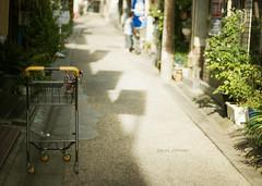 2880 : a cart (sakura_chihaya+) Tags: alley canoneos20d nara    contaxplanar1450mmj