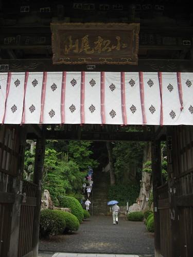 雨の小松尾山 大興寺