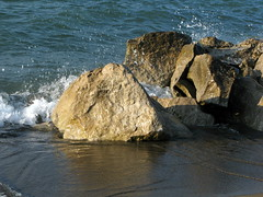 Lake's Waves Dos (gonisj) Tags: seagulls lake beach water swimming sand rocks erie rockybeaches
