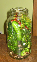 summer 2008 Pickles1