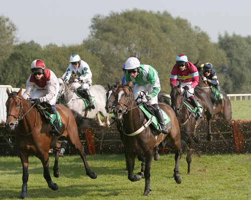 horses racetrack racing jockey betting racecourse jockeyclub racehorses northernraces
