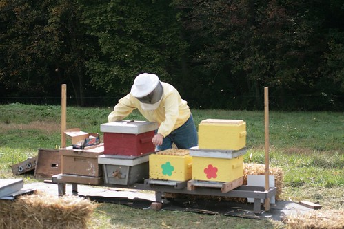 Buck moving bee hives