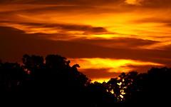 $3,000,000,000,000 Burning? (Cygnus~X1 - Visions by Sorenson) Tags: autumn sunset red sky orange yellow clouds landscape gimp indiana trillion 2008 monticello economy economics fireinthesky whitecounty hyperinflation spectacularsunsetsandsunrises craigsorenson 20081017103220est