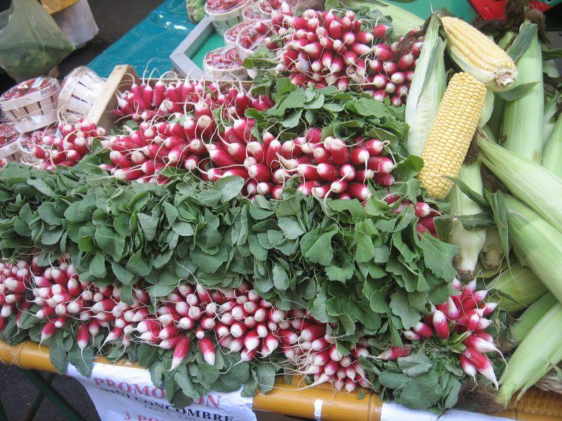 24 radishes