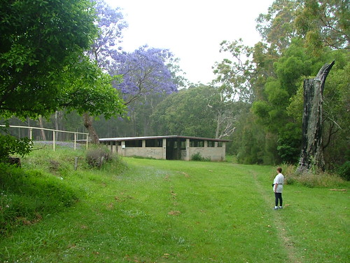 Coffs Creek Walk