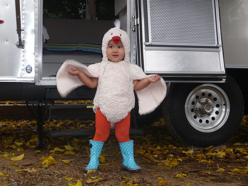 Airstream chicken in boots