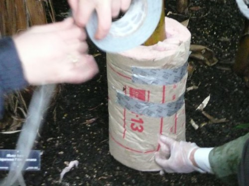 Duct taping the insulation