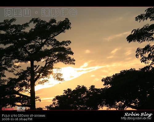 你拍攝的 20081116數位攝影_阿里山之旅303.jpg。
